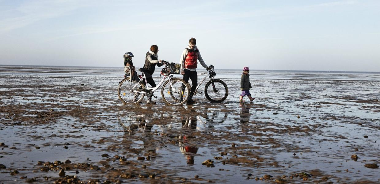 Family at Wadden Sea with Bikes