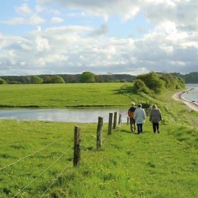 South Jutland Friends Walking