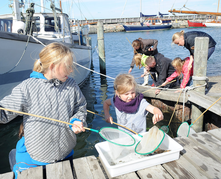 Children fishing in Vesthimmerland