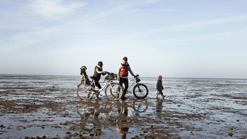 Wadden Sea - Family